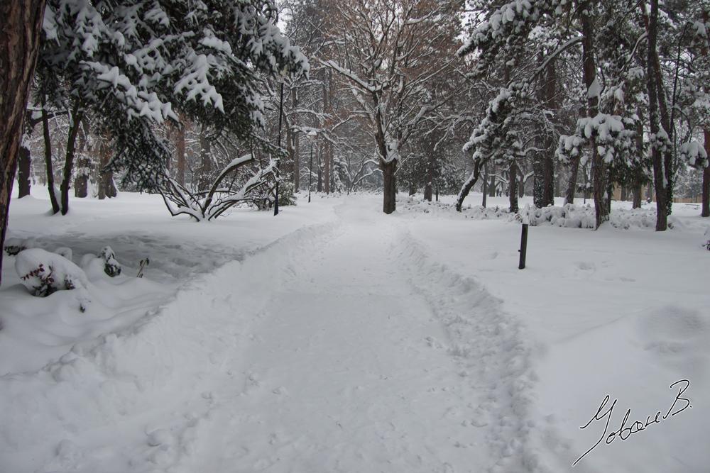 zima2012-1