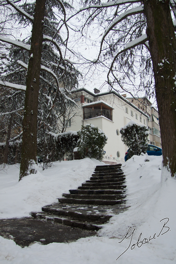 zima2012-13