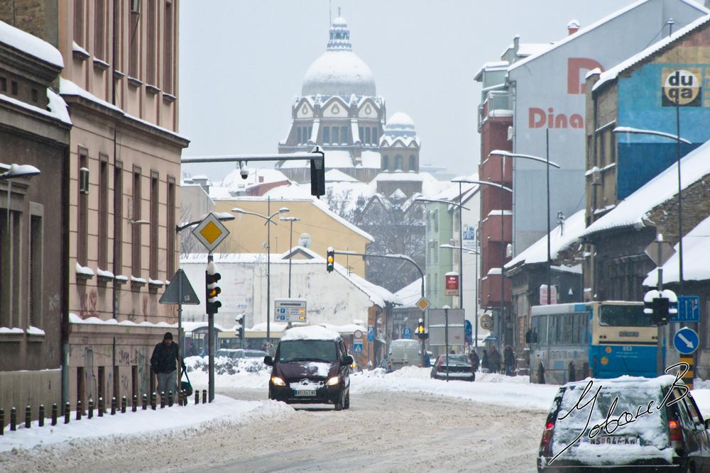 zima2012-24