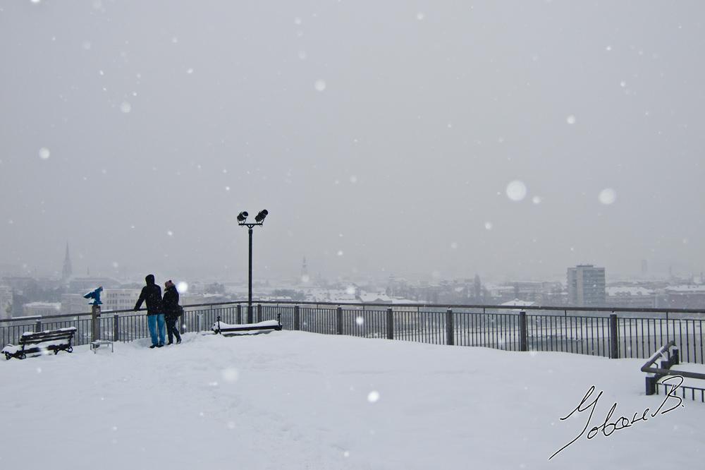 zima2012-8